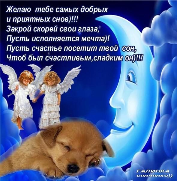 «добрых снов!» — с неба звёзды бормочат, сладко спи и спокойной ночи!