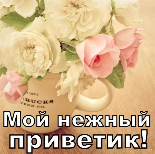 Открытки приветик для мужчин, дню влюбленных для