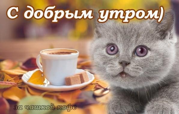 Картинка для светланы с добрым утром, приглашение чай случаю